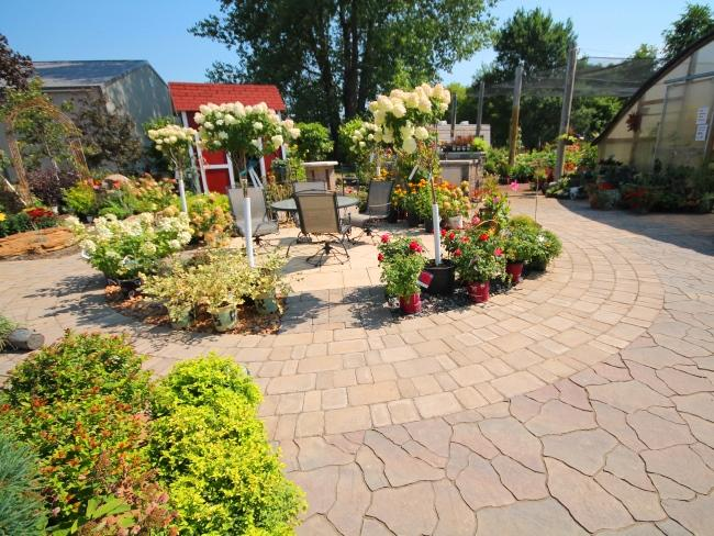 Photos From the Nursery - Spirit Lake Landscape Design & Installation | 4Evergreen Landscape